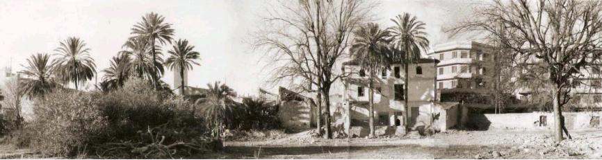 casa y huerto cayitas 1978