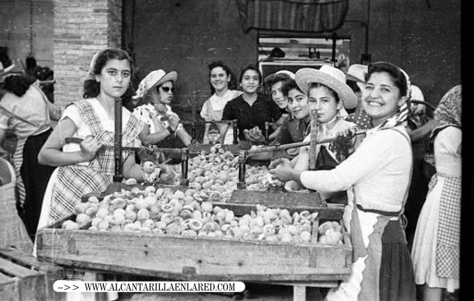 mujeres trabajando Fabrica conservas cascales ROTULADA